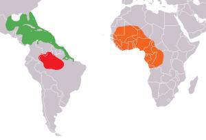 mapa_distribuicao_trichechus